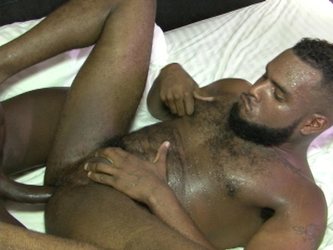 Black breeding gay