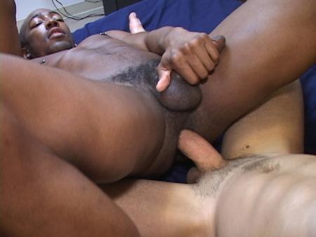 Free Gay Black Raw Porn
